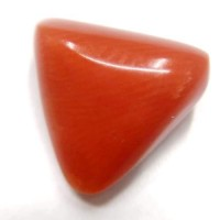 Natural Tringle Red Coral  4.04 Carat