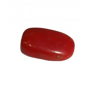 Natural Oval Red Coral  5.35 Carat / 5.88 Ratti