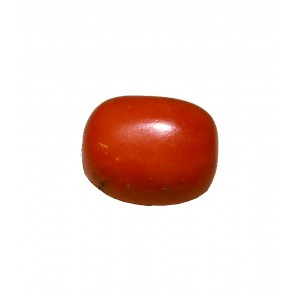 Natural Oval Red Coral 7.06 carat  / 7.76 Ratti