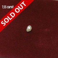 Natural Pearl 1.55 Carats